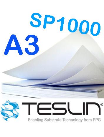 a3-teslin-1000